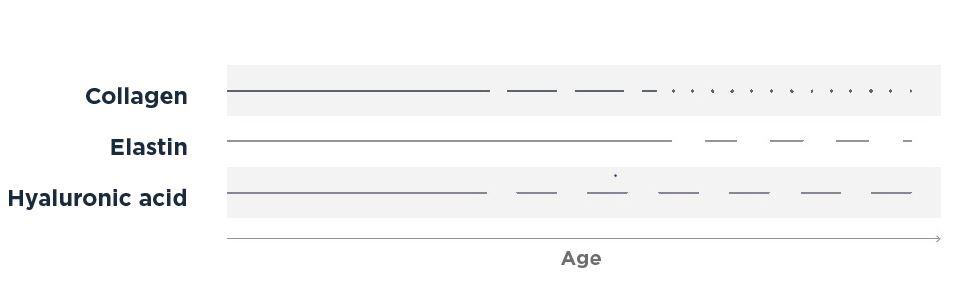 Aging-Skin-Timeline